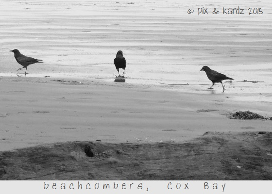 crows in sepia (560x420)